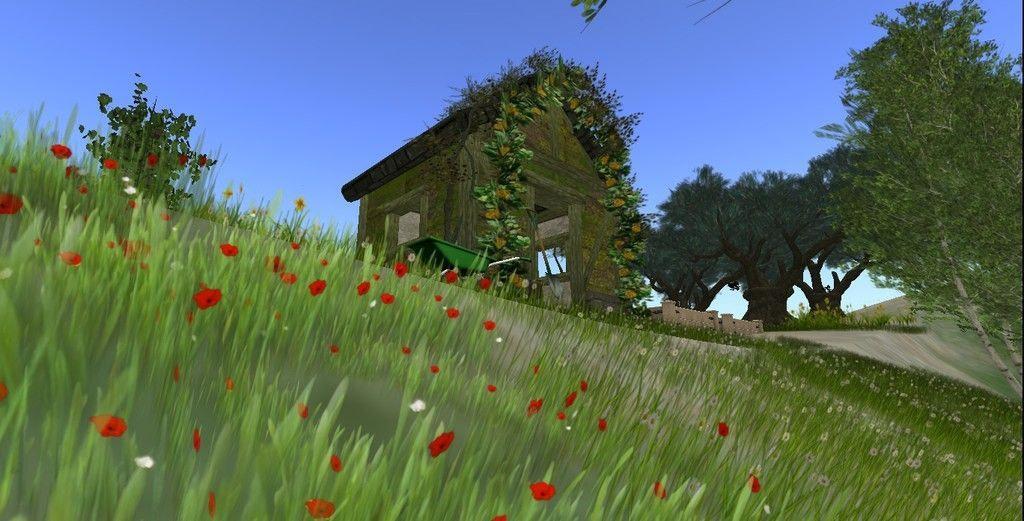 Sweet Countryside