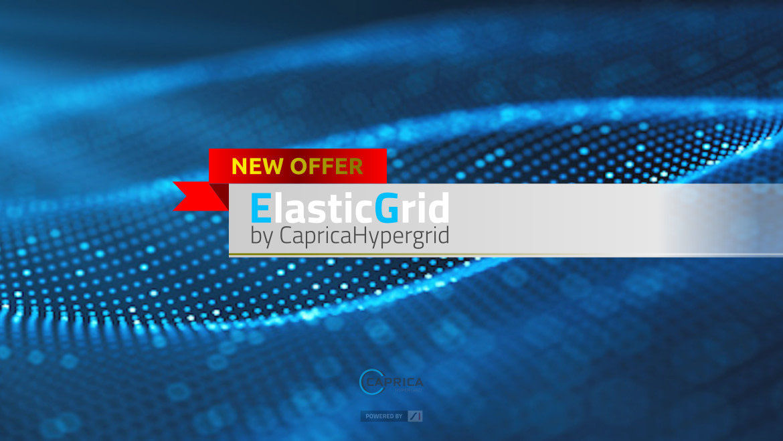 "Meet the new offer – ""Elastic Grid""!"